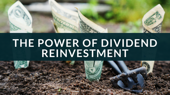 The power of dividend reinvestment